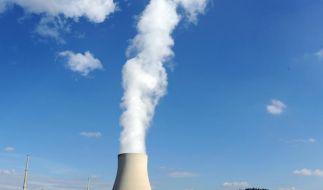 Mehrere deutsche Alt-Reaktoren vorerst abgeschaltet (Foto)