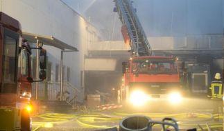 Millionenschaden bei Brand in Hähnchen-Schlachterei (Foto)