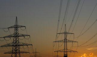 Ministerium warnt vor überlasteten Stromnetzen (Foto)