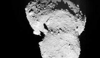 Mission geglückt: Erste Bodenproben eines Asteroiden (Foto)