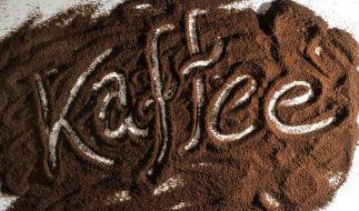 Mit ein wenig vertreutem Kaffeepulver im Innenraum des Autos lässt sich der Wintermuff gut vertreiben. (Foto)
