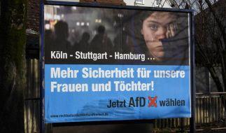 Mit Wahlplakaten wie diesem macht die AfD derzeit in Baden-Württemberg auf sich aufmerksam. Die Frage, die sich dabei stellt: Woher kommt das Geld für die Kampagne? (Foto)