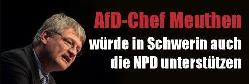 AfD-Bundeschef Meuthen