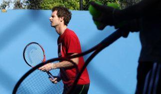 Murray oder Djokovic: Federer-Nachfolger gesucht (Foto)