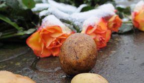 Neue Friedrich-Ausstellung widmet sich der Kartoffel (Foto)
