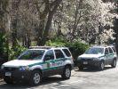 New York Polizeiwagen (Foto)
