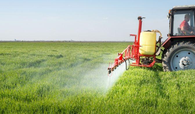 Diese Pestizide vergiften unsere Nahrung (Foto)