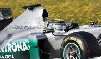 Nico Rosberg im Silberpfeil (Foto)