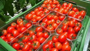 Obst und Gemüse weiter stark belastet (Foto)
