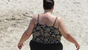 OECD: Fettleibigkeit ist weltweite Epidemie (Foto)