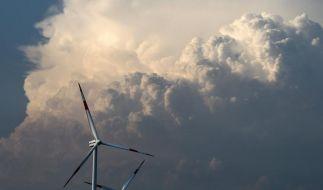 Ökostrom-Förderung kostet Bürger ein paar Euro mehr (Foto)