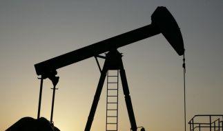 Ölexperte: OPEC muss Fördermenge deutlich drosseln (Foto)