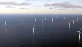 Offshore Windpark Baltic 1 geht ans Netz (Foto)