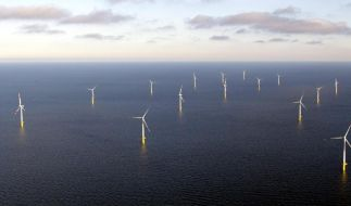 Offshore Windpark (Foto)