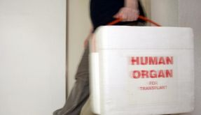 Organspende-Gesetz  (Foto)
