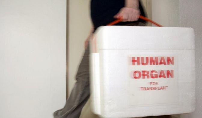 Organspendemangel in Deutschland (Foto)