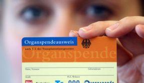 Organspender (Foto)