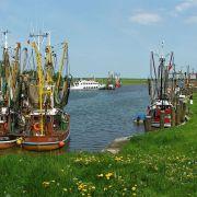 Nord- und Ostsee laden im Frühjahr zu Wattwanderungen, Fahrradtouren und Strandspaziergängen ein.