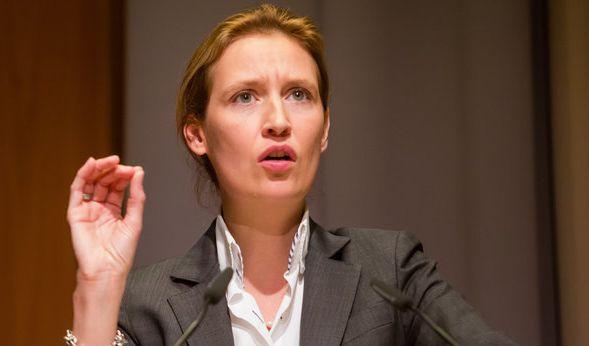 Parteivorsitzende Alice Weidel und die AfD-Bürgerwehr wollen Kiel am Wochenende einen Besuch abstatten. (Foto)