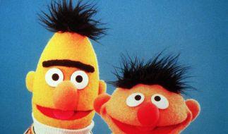 Petition fordert Homo-Ehe für Ernie & Bert (Foto)