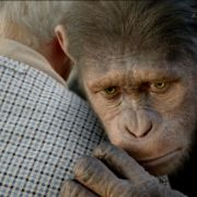 So traurig kann der animierte Affe Caesar dank Andy Serkis dreinschauen.