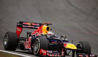 Platz 6 reichte für den Titel: Sebastian Vettel. (Foto)