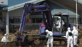 Polizisten in Strahlenschutzkleidung suchen nach Leichen im Seuchengebiet. (Foto)
