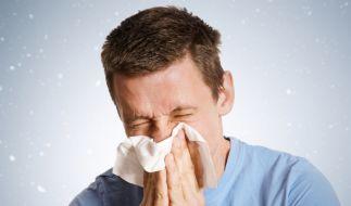 Pollenflug: Auch im Winter kann es Allergiker erwischen. (Foto)