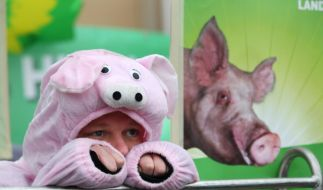 Protest gegen Massentierhaltung: 1000 Tierfabriken für Schweine und Hühner sind derzeit in Deutschland im Bau oder geplant. (Foto)