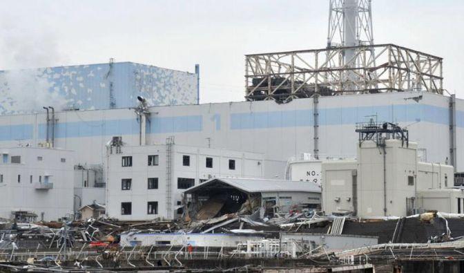 Radioaktivität am Meeresboden vor Fukushima erhöht (Foto)