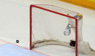 Randale in Eishockey-Oberliga: Spieler schlagen Fans (Foto)
