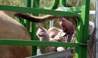Rechtsmediziner Prof. Boerne (Jan Joself Liefers) behält auch bei den größten Rindviechern den Durchblick. (Foto)