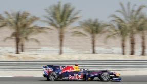 Red-Bull-Bolide in Bahrain (Foto)