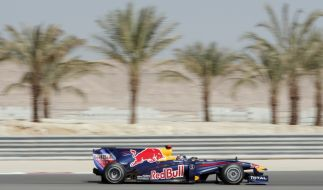 Red-Bull-Bolide in Bahrain (Foto)
