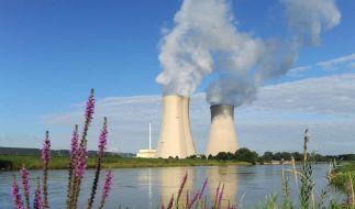 Regierung beginnt Atomberatungen (Foto)