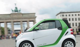 Regierung warnt vor Schwarzmalerei bei Elektroautos (Foto)