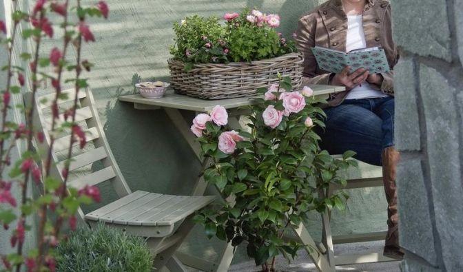 Rosen auf dem Balkon brauchen hohe Kübel (Foto)