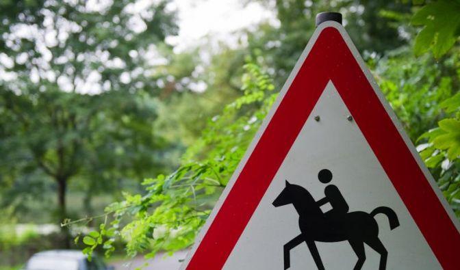 Ross und Reiter langsam und leise überholen (Foto)