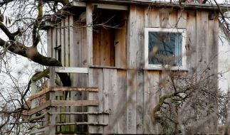 Rückzugsort in der Höhe: So gelingt das Baumhaus (Foto)