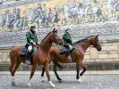 Sachsens Polizeireiter werden zu Grenzgängern (Foto)