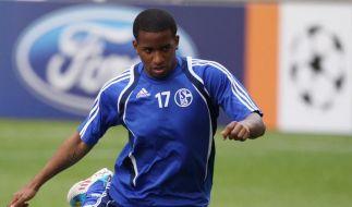 Schalke gegen Köln ohne Farfan und Jurado (Foto)