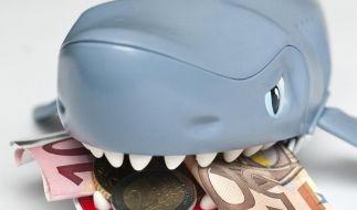 Schnelles Geld: Tipps für Kredite von Vermittlern (Foto)