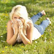Die größten Mythen rundum Pollenallergie und Co. (Foto)