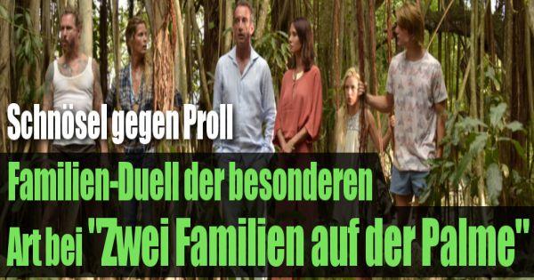 Zwei Familien Auf Der Palme Stream
