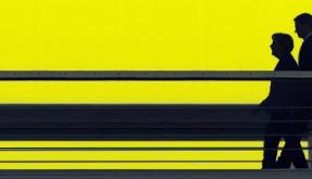 Schwarz-gelb (Foto)