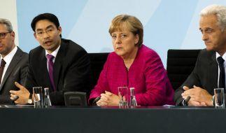 Schwarz-gelbe Koalition zu Energiekonzept (Foto)