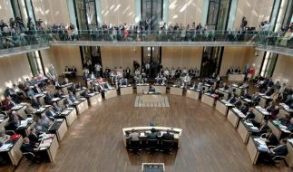 Schwarz-gelbe Steuerpläne wackeln - Patt im Bundesrat (Foto)