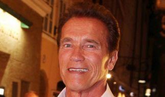 Schwarzenegger erhält Verstärkung für «The Last Stand» (Foto)