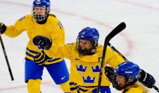 schlag beim eishockey