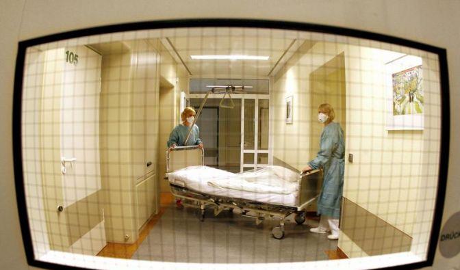 Schweinegrippe: Gesundheitsamt warnt vor Panik (Foto)